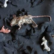 golem-boneman_Fleur-van-den-Berg_artist_Foto_RW__MG_5199