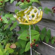 bloem tuin, Mirjam van der Hoorn