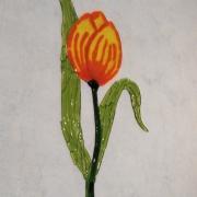 tulp, Leo van den Berg